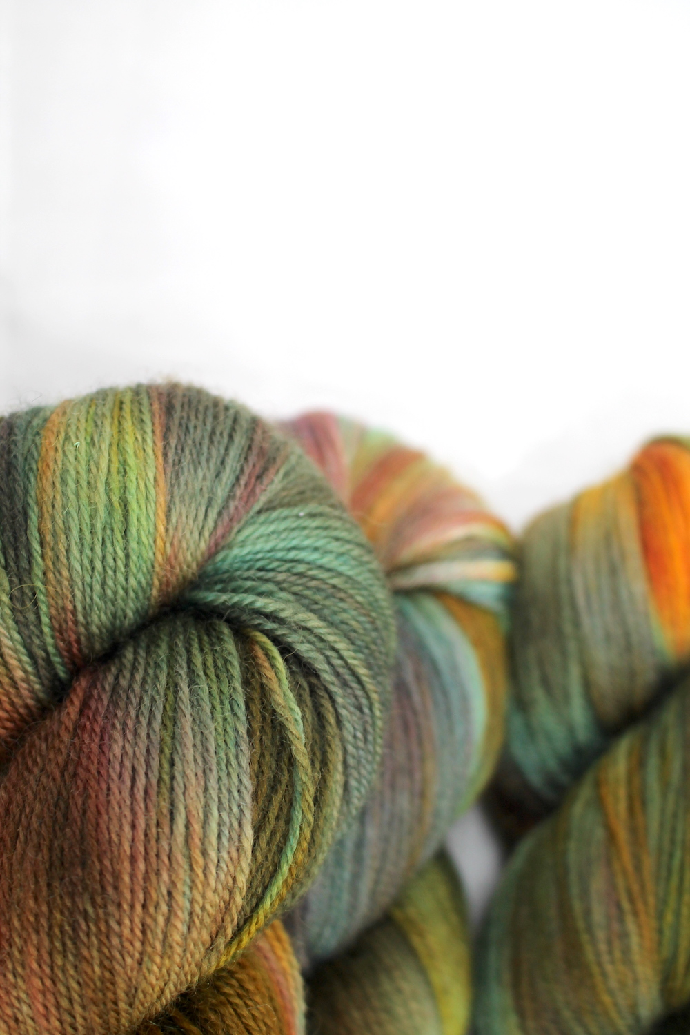 Skeins of Shroom - highly variegated autumnal colours