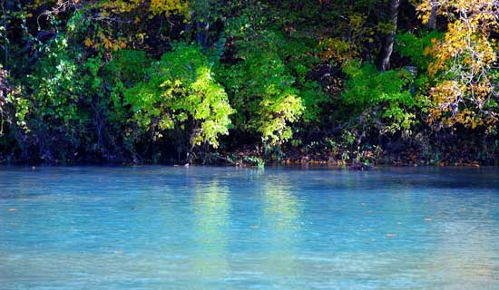 Contact for Fly Fishing at the River of Life Farm Outfitters for the North Fork of the White