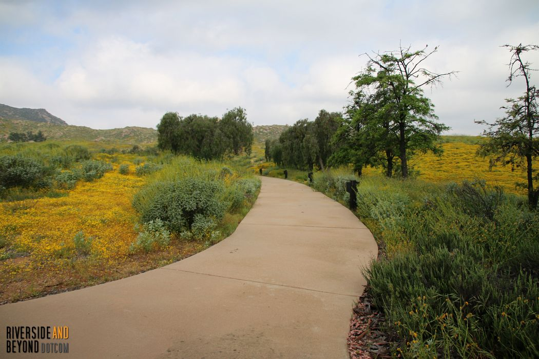 Paved trail to the amphitheater