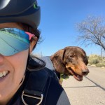 Woman Riding with a dachshund dog in a backpack.
