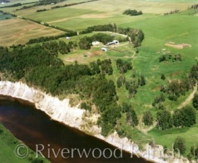 Riverwood Ranch 1998