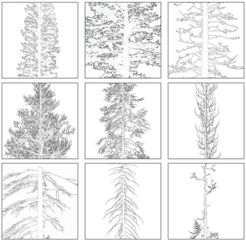 Treegroupof9