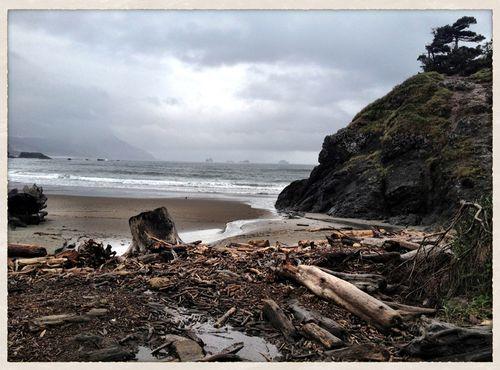 Beach_portorford
