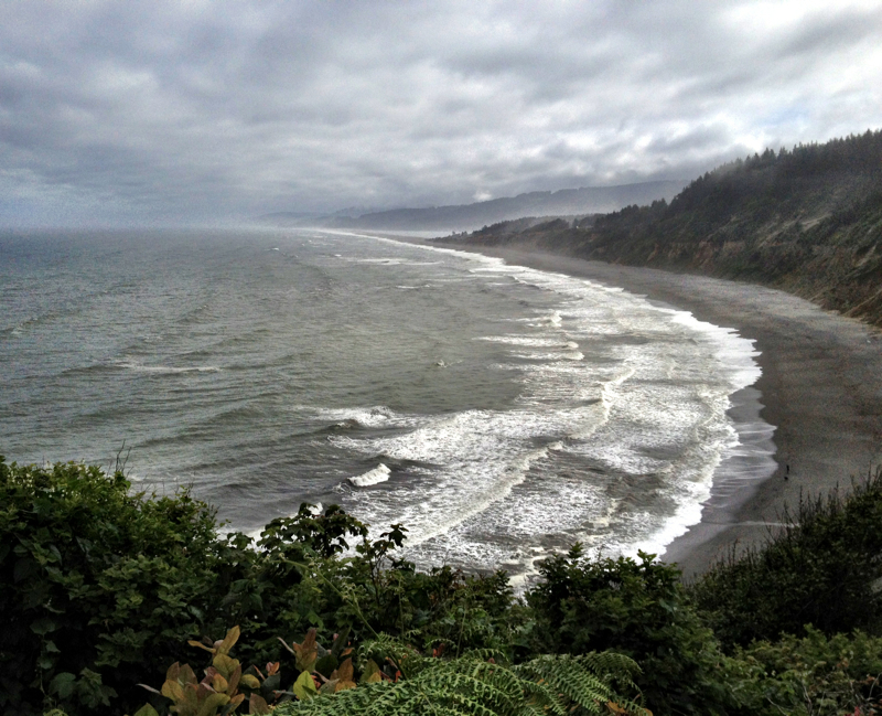 Patrick's Point State Park, CA - 18