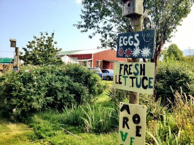 Farmmarket1