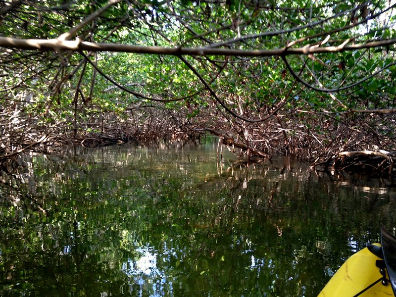 Kayaking_curryhammock-1
