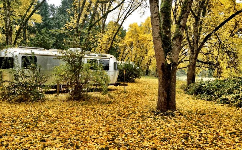 Fall_airstream