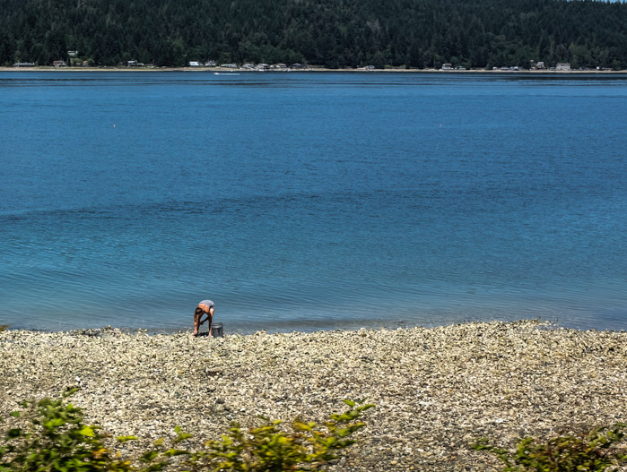 Exploring Hood Canal Riveted