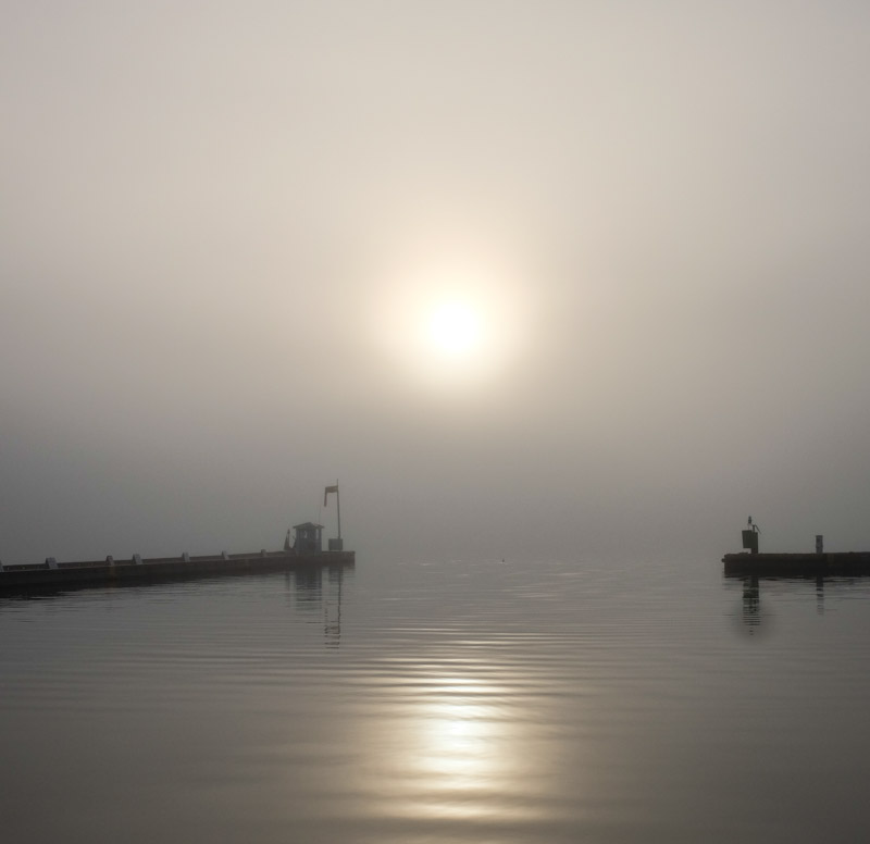 Foggy_fridayharbor