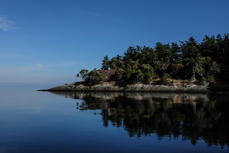 Westbay_orcas-2461