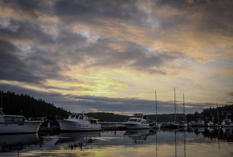 Fridayharbor-3239