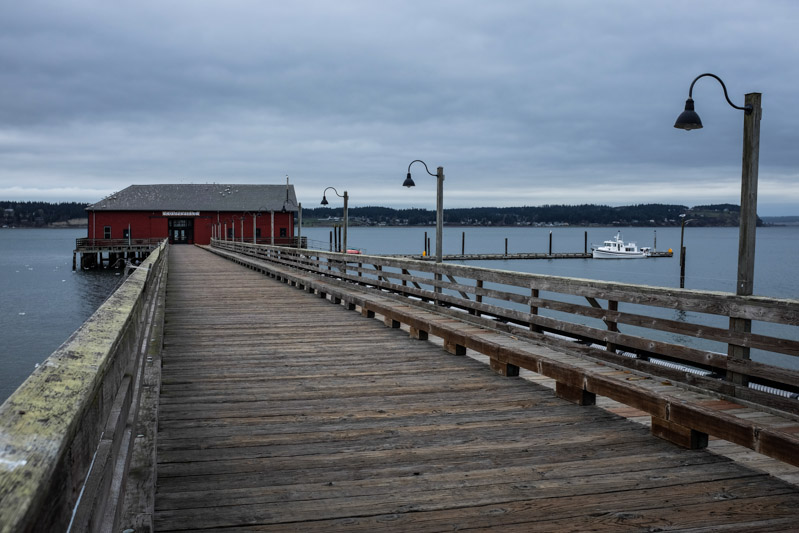 Whidbey-3299