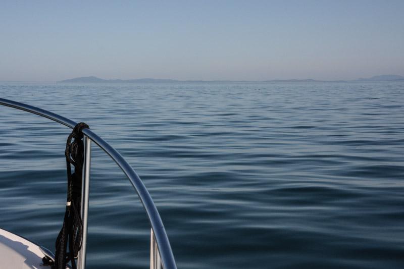 PT_Stuart_orcas-0719