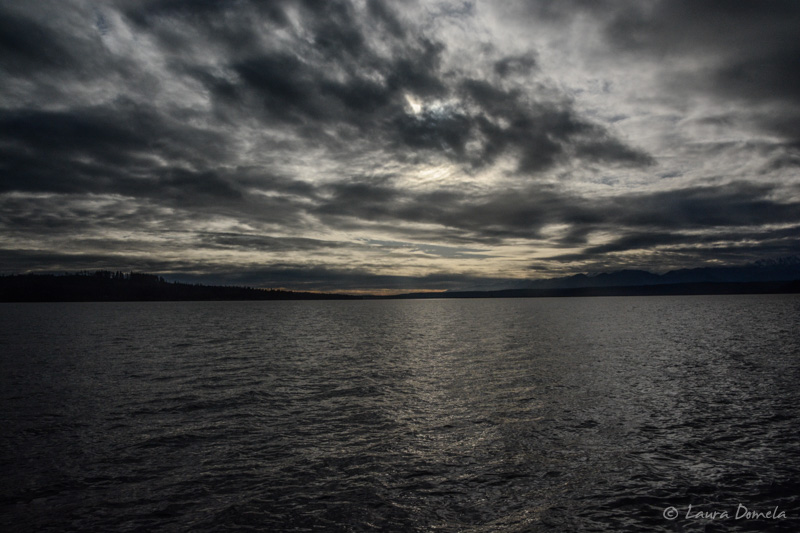 Pugetsound-0276