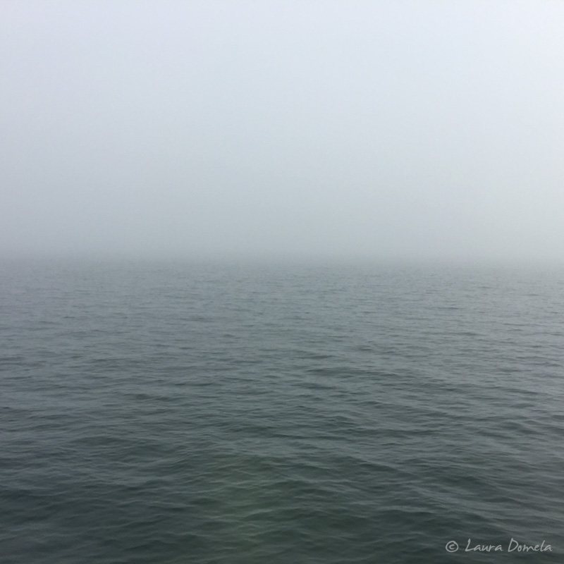 Fog-0455