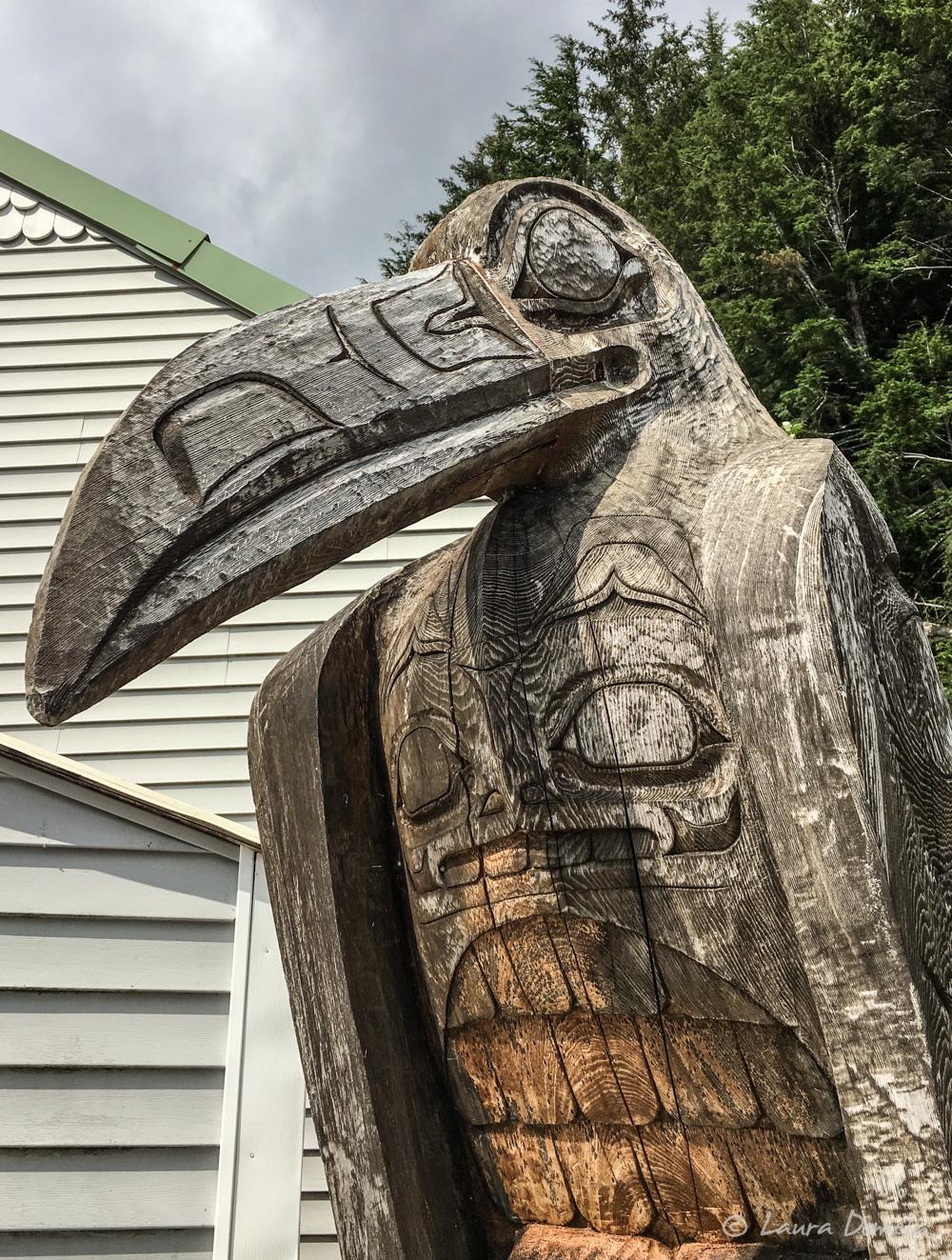 pelican-1156