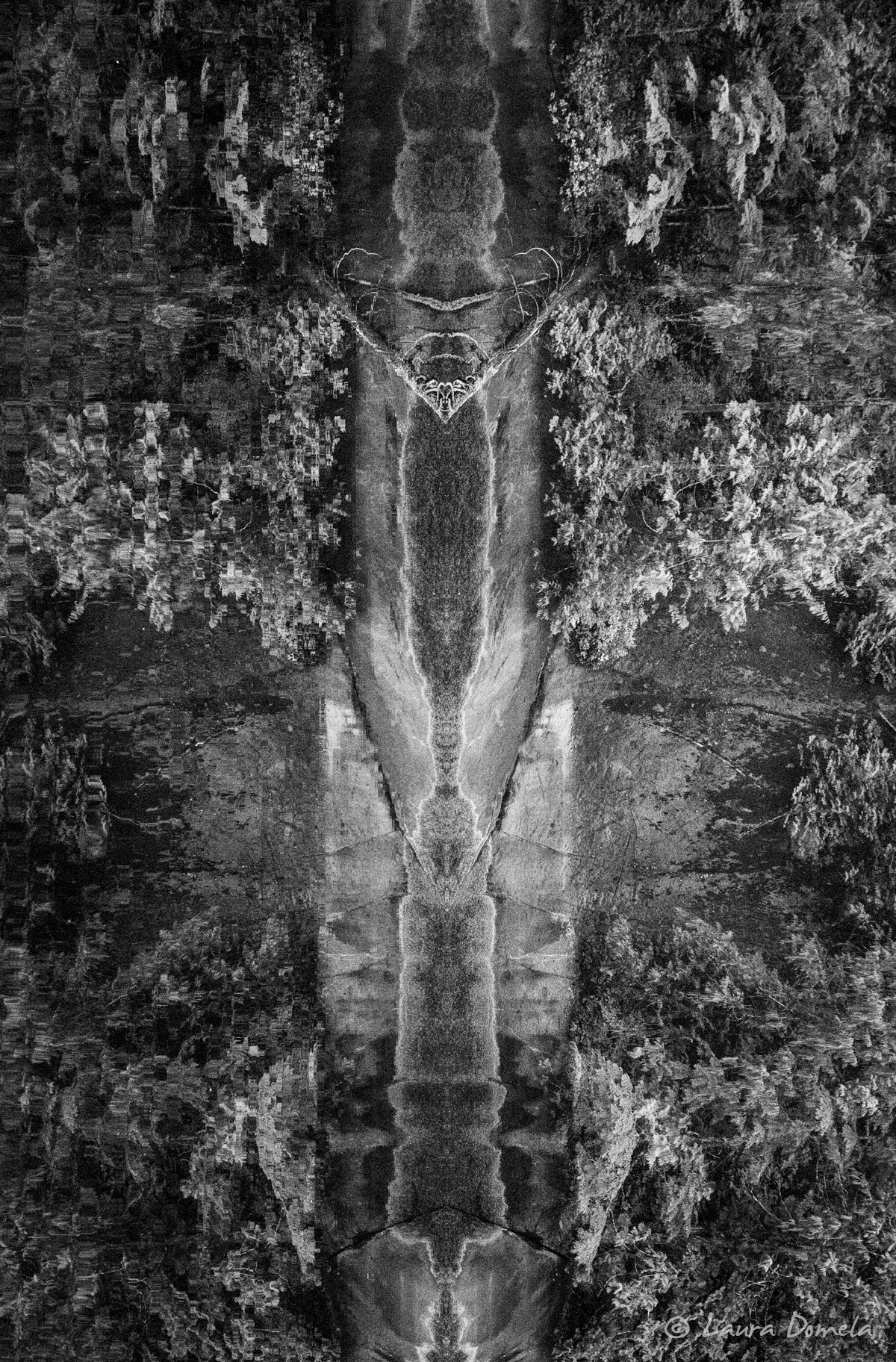 reflectiontotem-6795