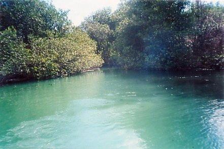 Isla Blanca lagoon