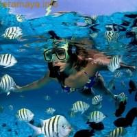 snorkel-riviera-maya