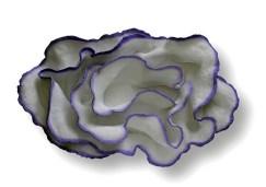 6 - IGINIO IURILLI - Medusa - 2014 - cm. 55x40x8 terracotta dipinta