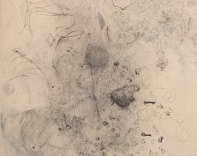 Shelagh Wakely (1932 - 2011), From the series As Yet Unnamed drawings - Poison, 1988-90 (detail)