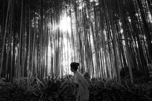 60_-SETUP2018-under35-BI-BOx-Art-Space-Olmo-Amato-Madre-In-Foresta-di-bambu-2018