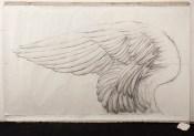 Omar Galliani, Altri voli, 1978, matita su carta, cm. 150x300