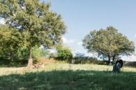 Giovanni Gaggia 12+1 PROPHETA il silenzio dei vivi Aulia Land Art Festival phMarikaRamunno-10
