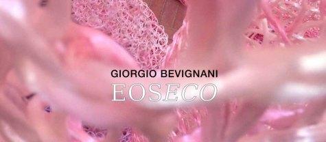 Giorgio Bevignani,EOSECOa Palazzo Zambeccarie Piazza de'Calderoni Bologna 2019