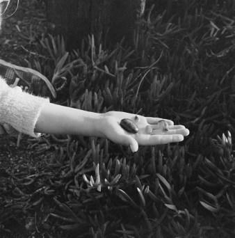 Dyanna's Hand w Stones_ridotta