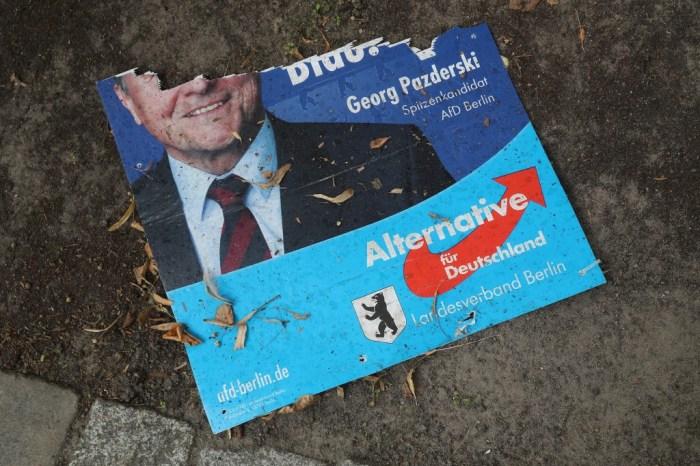 Alternative fuer Deutschland (AfD)