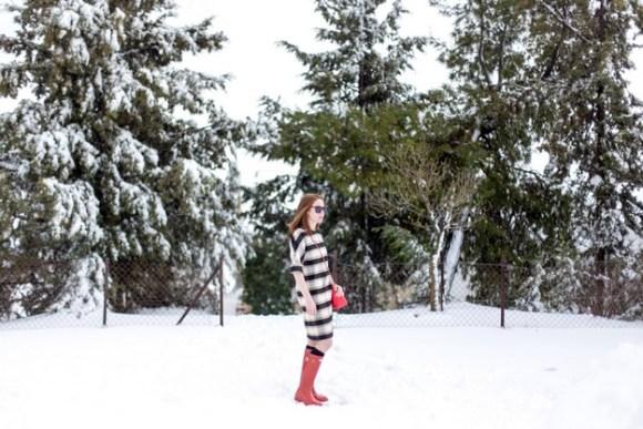 Winter wunderland_00017