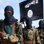 Shabaab spy chief killed in U.S. strike: Somalia