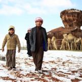Saudi boys in the Aleghan Heights in the Tabuk region.