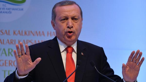 Turkish President Recep Tayyip Erdogan speaks during a meeting on April 29, 2015 in Ankara.