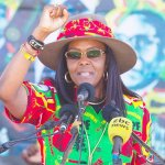 South Africa has granted Grace Mugabe diplomatic immunity — source