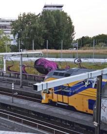 NS Train in Rotterdam