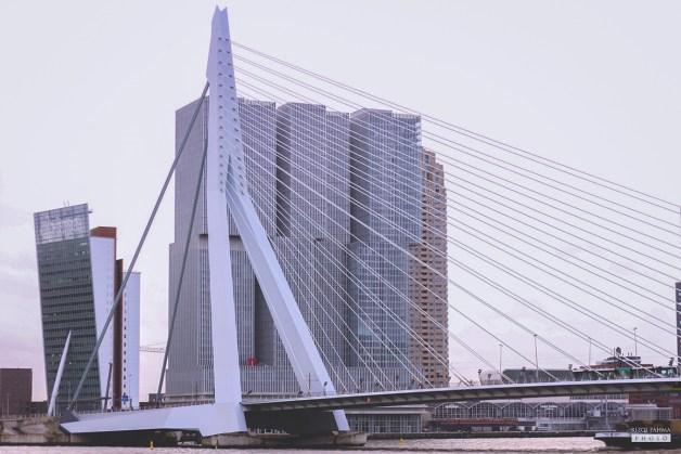 Jembatan Erasmusbrug, Rotterdam
