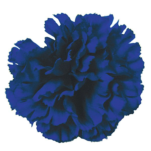 Silk Carnation Pick Royal Focal Flowers