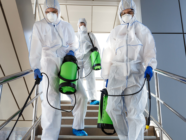 How Commercial Covid Cleaning Services Can Help Your Business Thrive