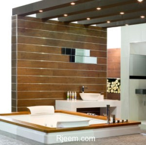 Contemporary bathroom with wooden walls and spa bathtub