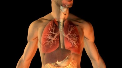 Photo of علاج طبيعي يمنح جسمك المناعة ومقاومة اي مرض