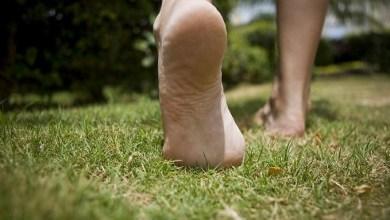 Photo of أهمية المشي بأقدام حافية