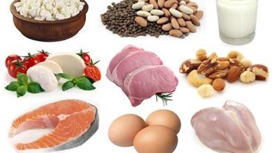 Photo of الدهون والبروتينات والكربوهيدرات