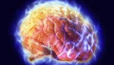 Photo of عادات تدمر الدماغ-مقال يشمل عادات مضرة بالدماغ مع كيفية تجنبها