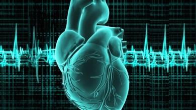 Photo of كيف تحمي قلبك من الامراض