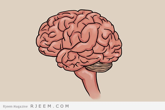 19 طريقة لتقوية الدماغ
