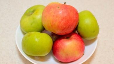 Photo of القيمة الغذائية للتفاح