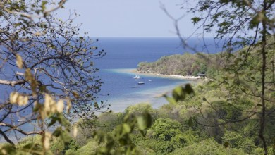 Photo of أفضل 10 جزر قريبة من بالي Bali
