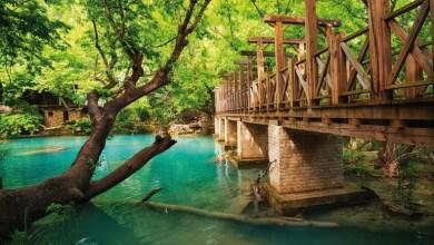 Photo of أماكن مناسبة للسياحة في تركيا في فصل الربيع